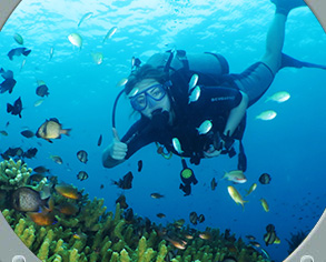 Dive Bali  with SDD Dive Center